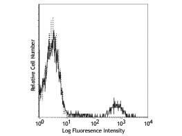 CD20 Fluorescein Antibody