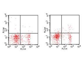 CD25 Phycoerythrin Antibody